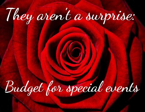 budget for special events